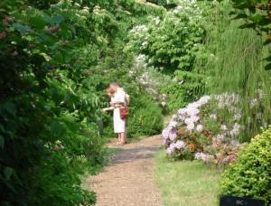 Arboretum Melzingen 4