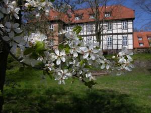 Burg-Bodenteich (3)